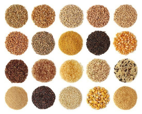 Taller de Cereals – Primavera/Estiu